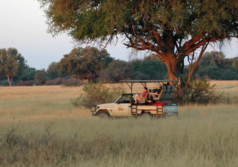 2-safari-in-hwange