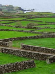 Terceira landscape (Peter Lowy)